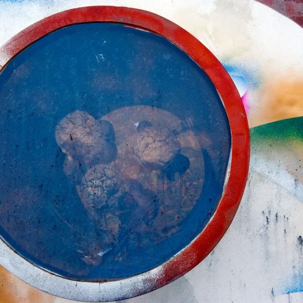 Pangean Disc