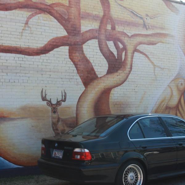 Hart Center Mural