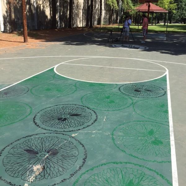 Project Backboard- Orange Mound Park